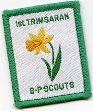 Scout Troop Badge